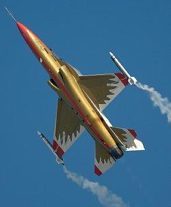 Korean T-50 dazzling performance W250