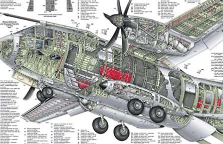 C-27 cutaway tn