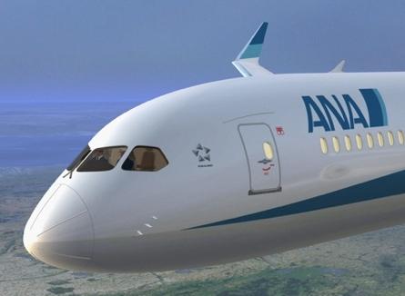 ana 787-3 large