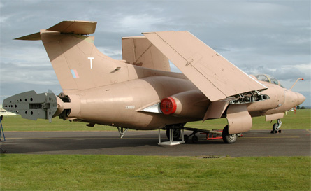 Buccaneer - Goose on AirSapce