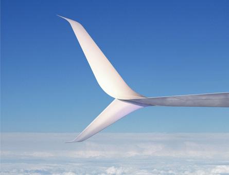 Aviation Partners split winglets