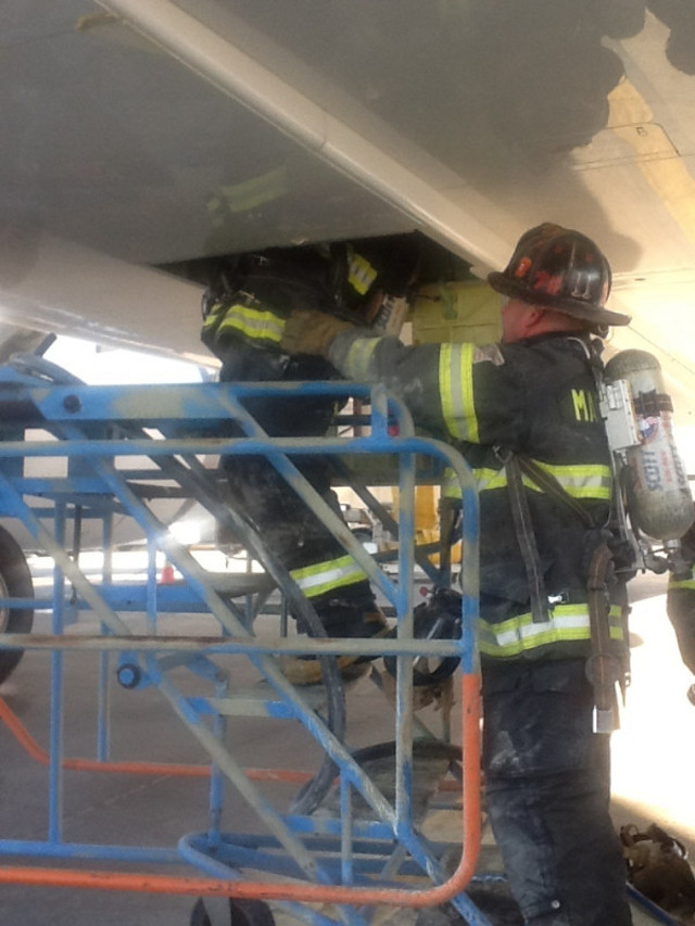 787 jal fire bay