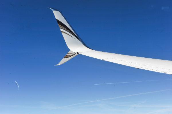 API winglet