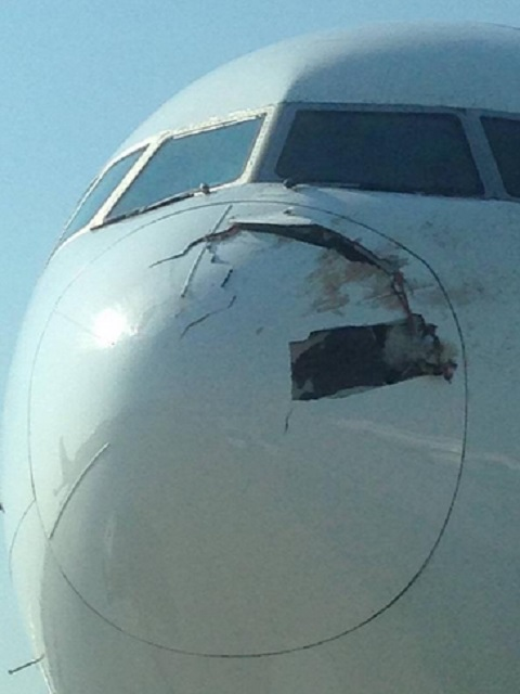 SIA 777 birdstrike (radome damage)