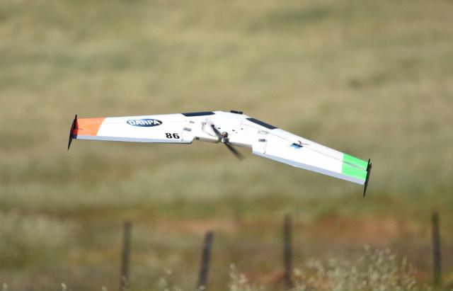 Drone - DARPA