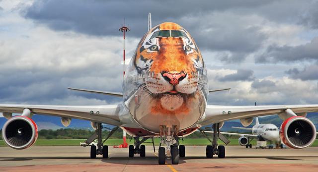Rossiya Tiger