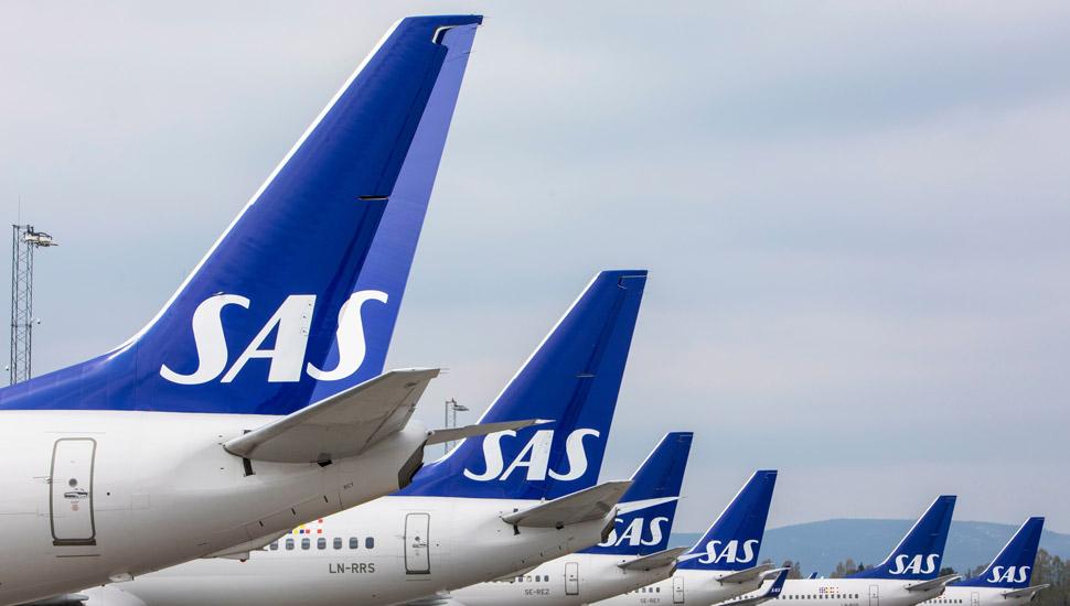 SAS-tails-shutterstock c